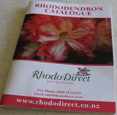 RhodoDirect  Rhododendron Catalogue